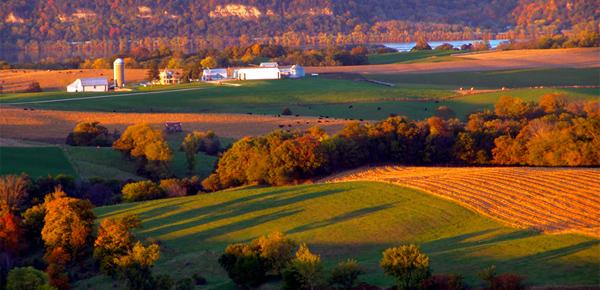 Iowafall_farm